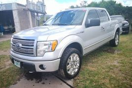 Ford, F-150 Platinum | 2010