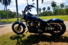 Harley Davidson | 2007