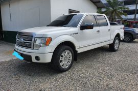 Ford, F150 | 2010