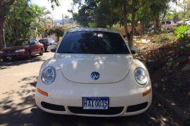 Beetle | 2008