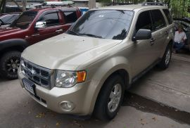 FORD ESCAPE XLT 2010